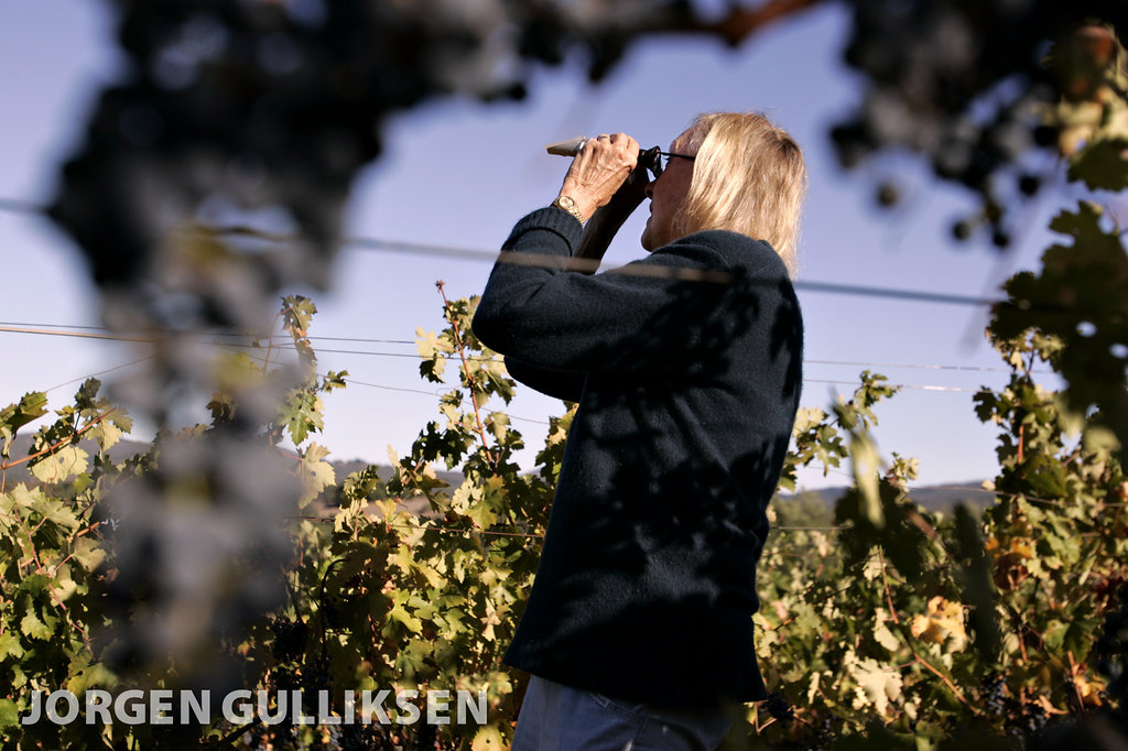 WineFood-15.jpg